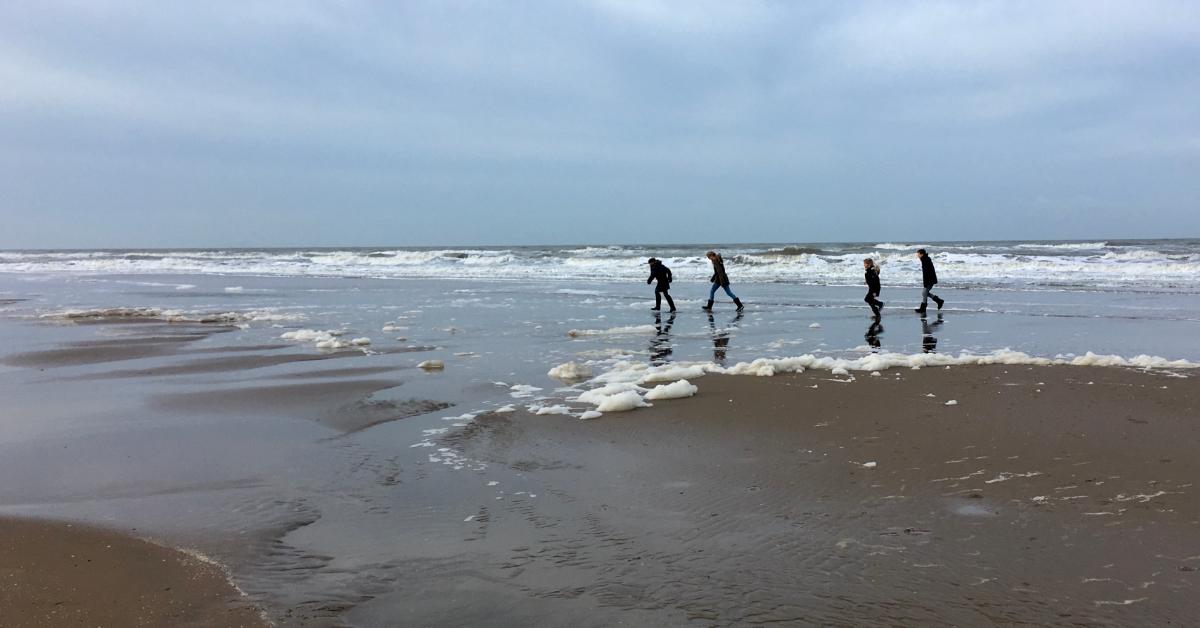Ekoterapija-atlantski ocean-firstcornershop